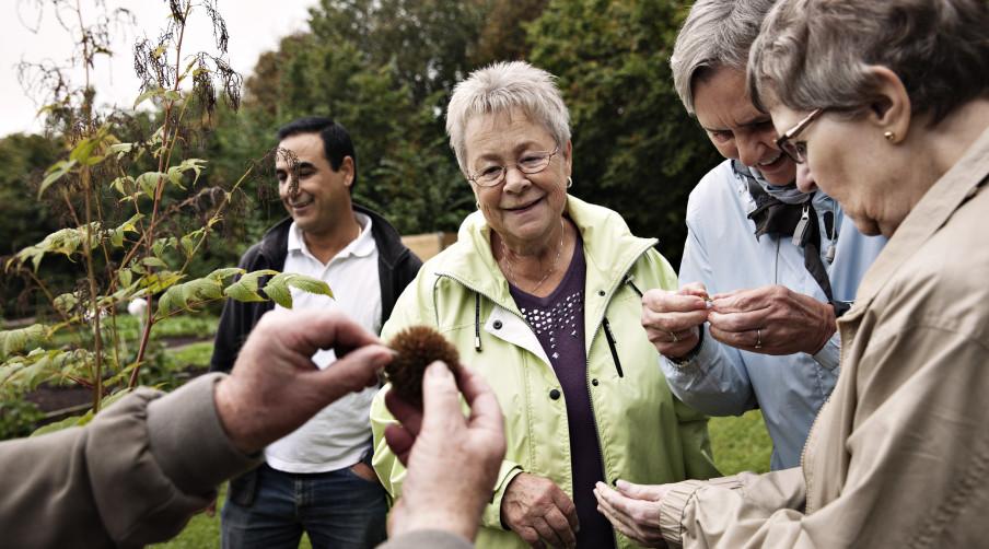 Vi undersøger sociale fællesskaber og analyserer, hvorfor mennesker handler, som de gør.